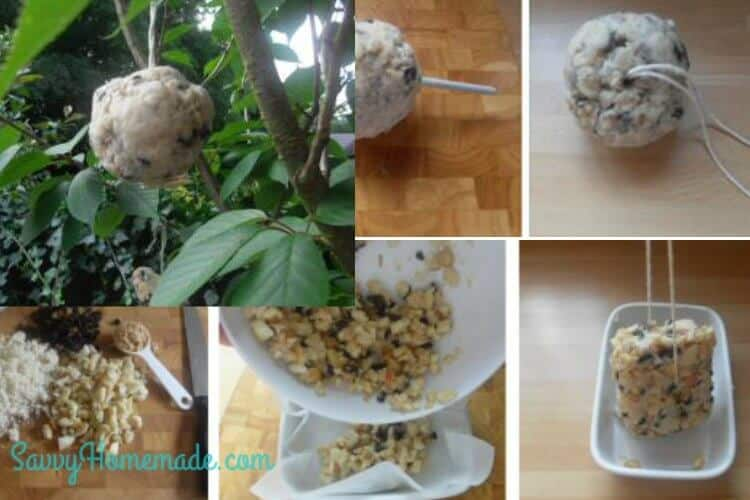 making homemade bird food