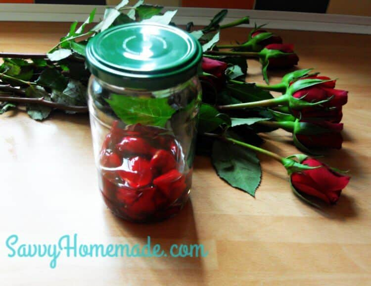 rose oil infusion