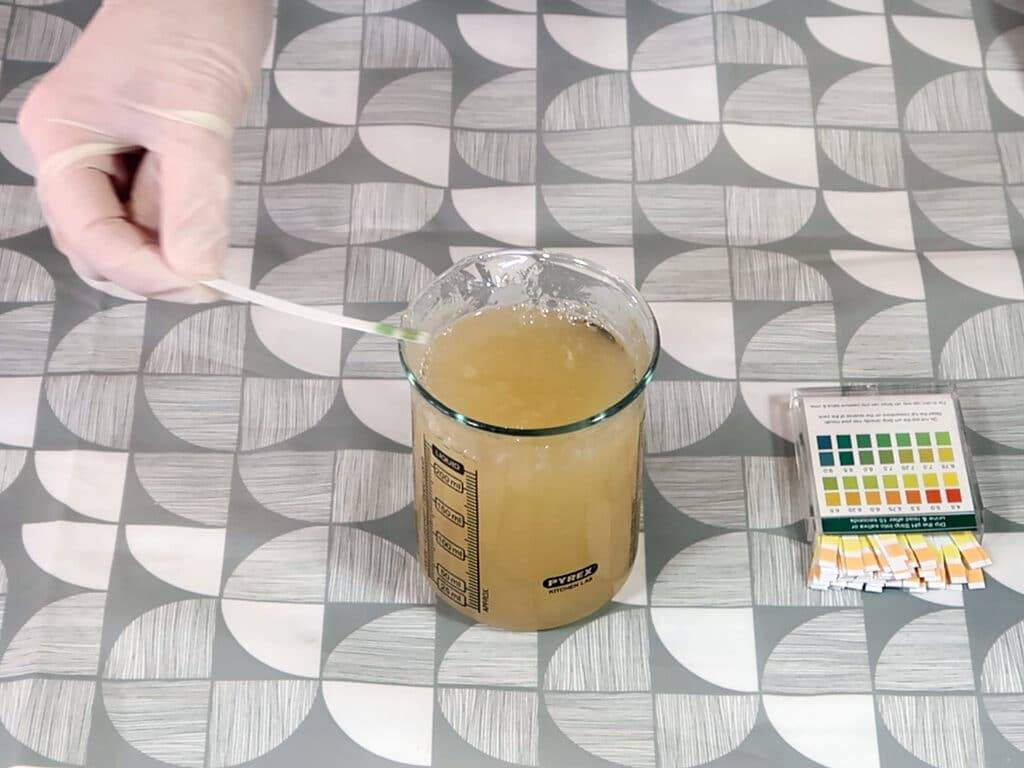 Step 8: Test your mixture with a PH testing strip, you're looking for a PH of 6